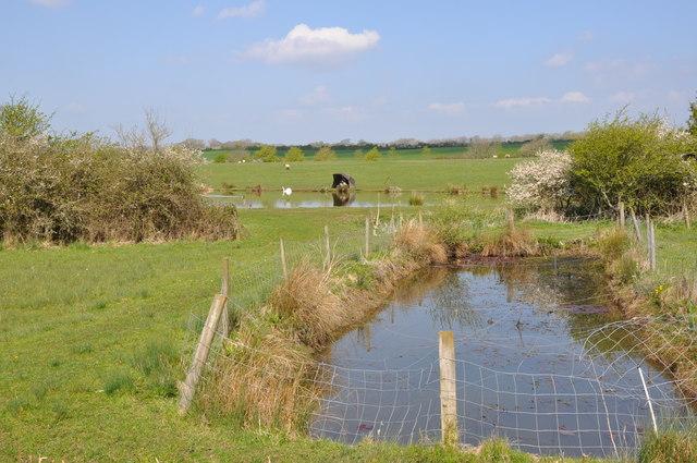Nursery Pond Hazlecourt Fish Pond C Mick Lobb Geograph Britain And Ireland