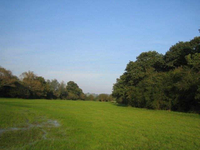 Field next to Grendon Wood