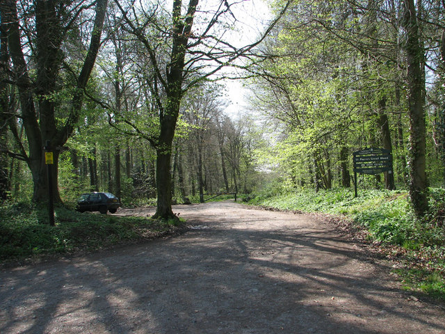 St Pierre's Great Wood Forestry Commission Car Park