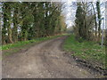 TL1070 : Footpath to Stocking Lane by Shaun Ferguson
