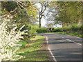 SJ7162 : Sharp bend on Dragon's Lane by Stephen Craven