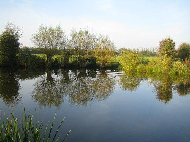 Pond near River Ray