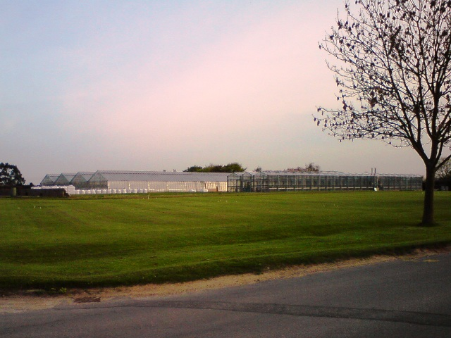 Greenhouses at Levington Research... © Tim Marchant cc-by-sa/2.0 ...