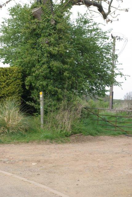 Footpath toward Waverley