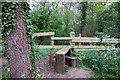 SP5200 : Stile into Radley Large Wood by Steve Daniels