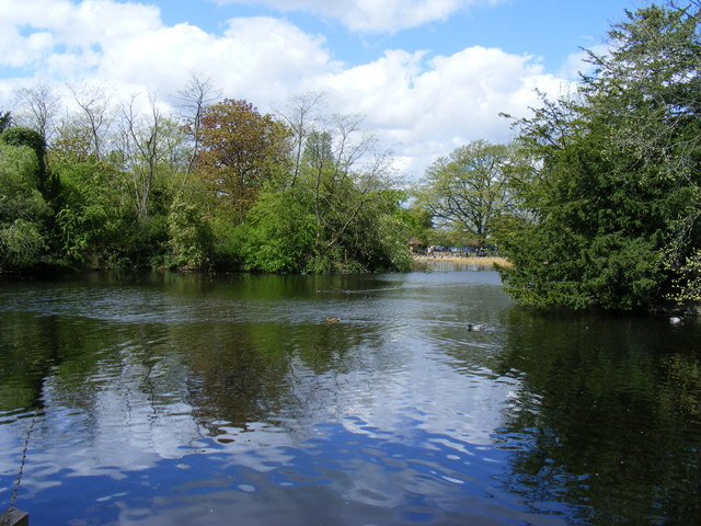 Lake in Dulwich Park