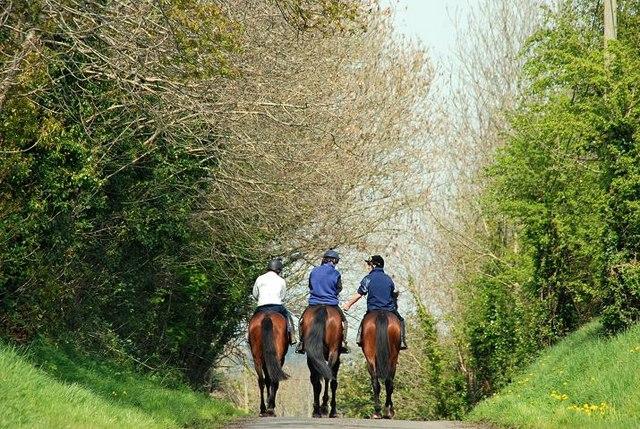 equestrian dating ireland