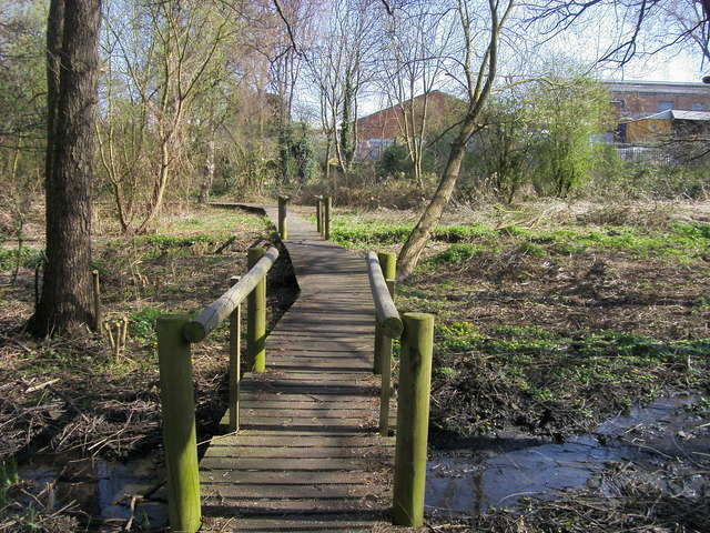 Boardwalk over marshy ground