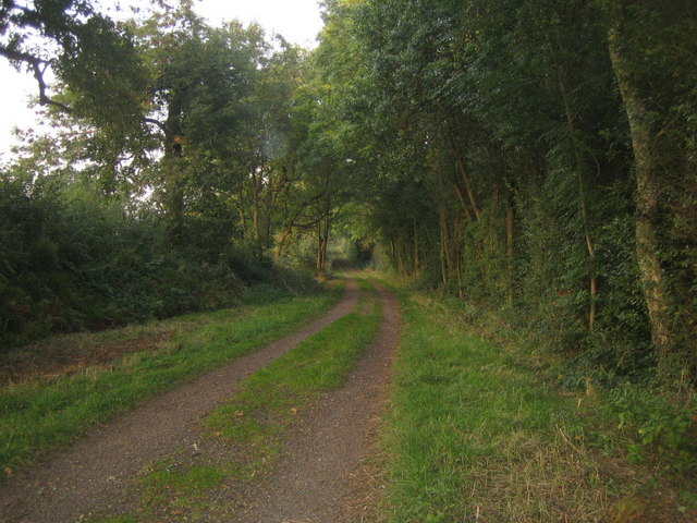 Three Points Lane, Runt's Wood