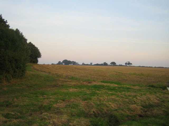 Field on Finemere Hill