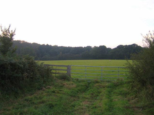Farmland, Three Point's Lane
