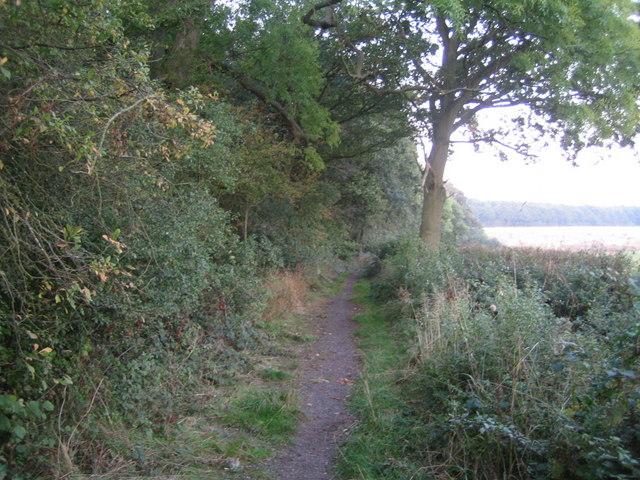 Three Points Lane, Finemere Hill 3
