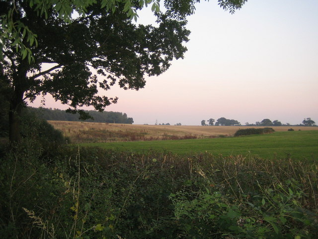 Farmland, Finemere Hill