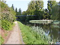 SO9793 : Walsall Canal View by Gordon Griffiths