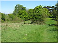 Dist:0.3km<br/>This footpath leads from Old Bexley Lane into the large (314 acres) Heath.