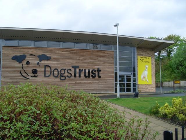 Dogs Trust Near London