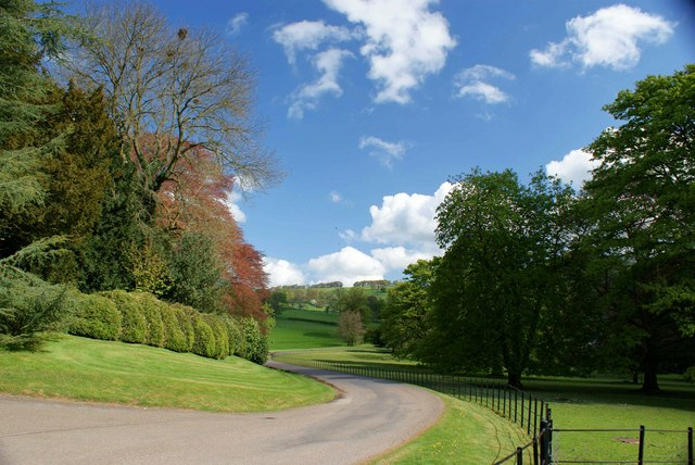 Lane Leading To Ilam Hall