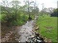 SO5586 : Tugford Brook - downstream of Tugford by John M