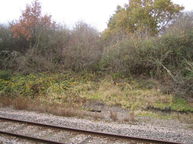 Dismantled railway 4