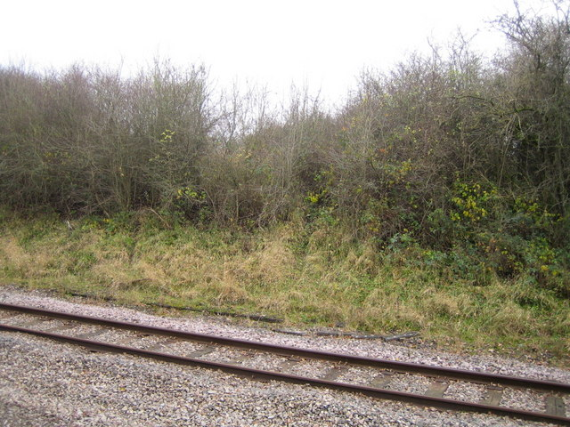 Dismantled railway 5