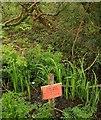 SW7944 : Notice, Halbullock Moor by Derek Harper