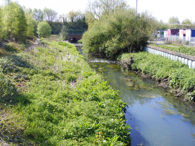 River Tame Path