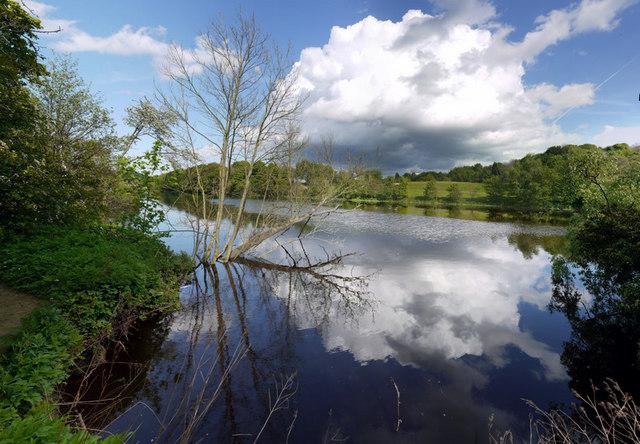 River Tyne east of Stephenson's Cottage