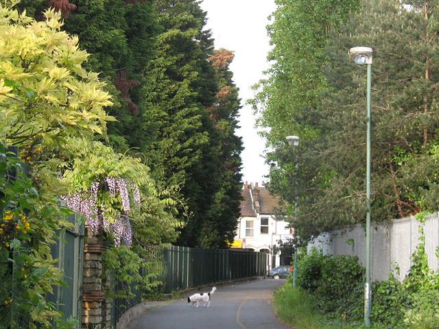 Edith Nesbit Walk, Eltham