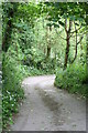 SW3824 : Bridleway leading to Tresidder Mills by Rod Allday