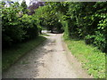 Dist:0.9km<br/>Lane and Bridleway passing Brantridge heading to Ronald Wood
