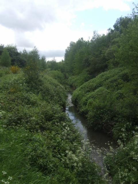 Sneyd Brook