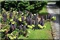 SJ6746 : Ornamental cones by Dave Dunford