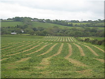 SW7440 : Freshly mown hay field at Gwennap by Rod Allday