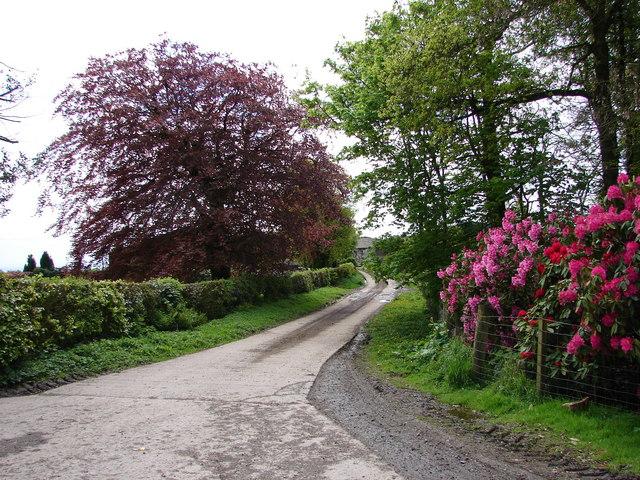 Wysebyhill Farm