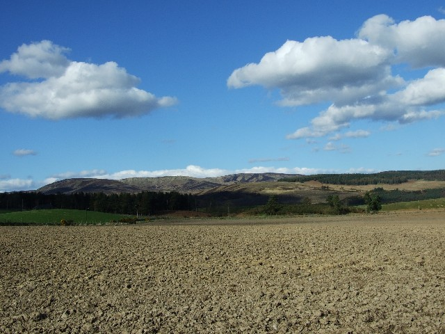 Farmland at Dalbog, near Edzell