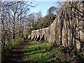 SS7697 : Buttressed wall, Gnoll by Robert Davies
