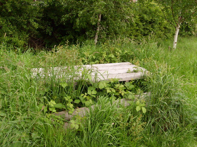 Bring your own strimmer, bench on the riverside walk, Newtown, Powys