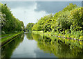 SJ8902 : The Shropshire Union Canal near Wolverhampton by Roger  Kidd