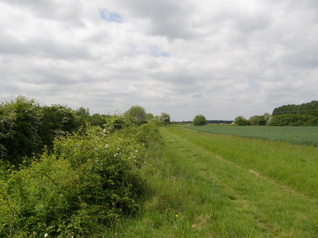 Farm track and disused railway near Broad Lane