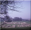 TQ4778 : Lesnes Abbey ruins, 1966 by G H Clarke