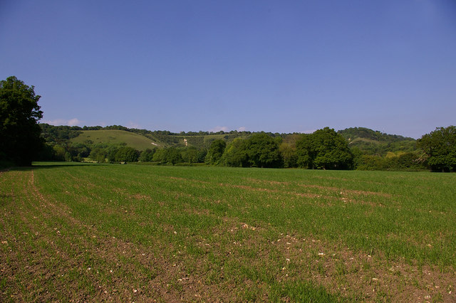 Towards Colley Hill