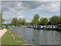 TL3812 : River Lea Navigation above Stanstead Lock by Stephen Craven