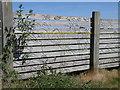 TL2195 : Panel fence art, Farcet by Michael Trolove