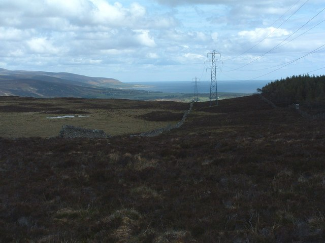 Forestry fence, pylons and old wall all heading the same way