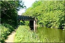 SU4466 : Pickletimber railway bridge by Graham Horn