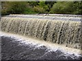 NT2373 : Belford Weir, Water of Leith by kim traynor