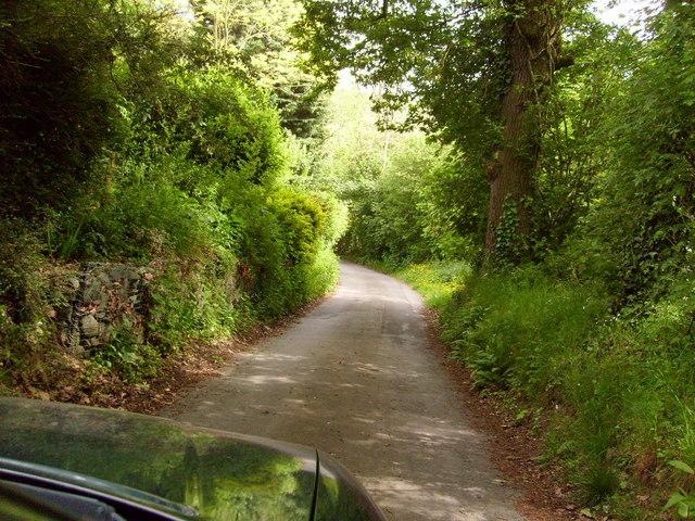Lonesome Lane, Newtown, Powys