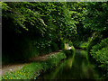 SJ9003 : Marsh Lane Narrows, near Wolverhampton by Roger  Kidd