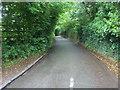 SU7585 : Lane to Henley by Shaun Ferguson