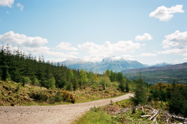 Forestry track (Ben Nevis in background)